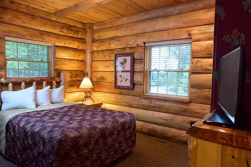 5 Bedroom Entertainment Cabin Wilderness Resort