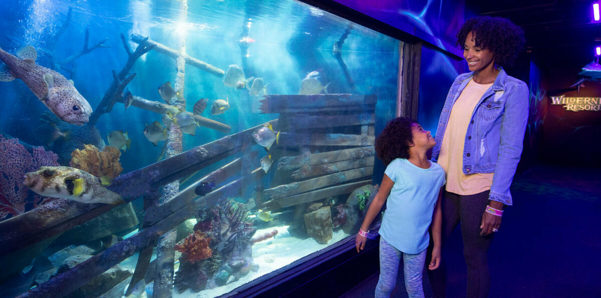 Wild Abyss Family Golf. Mom and daughter watching the fish in the aquarium.